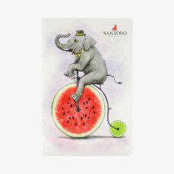 zeszyt - Santoro - Fruity Scooty - Słoń na bicyklu